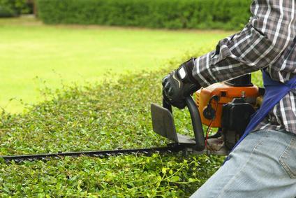 Entretien de jardin - Ambiance Paysage Hennebont